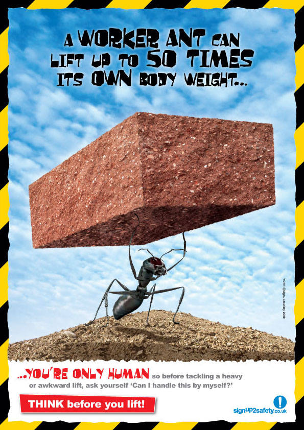 Lifting and handling safety poster